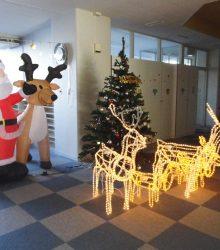 12月の玄関の様子
